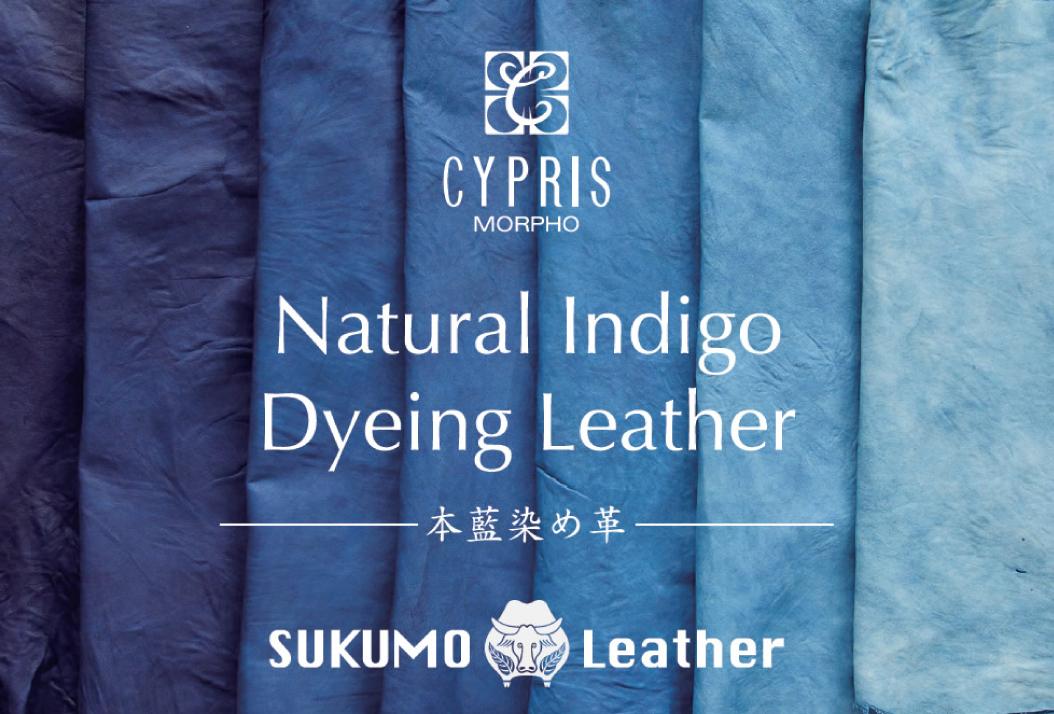 本藍染めの革 Natural Indigo Dyeing Leather