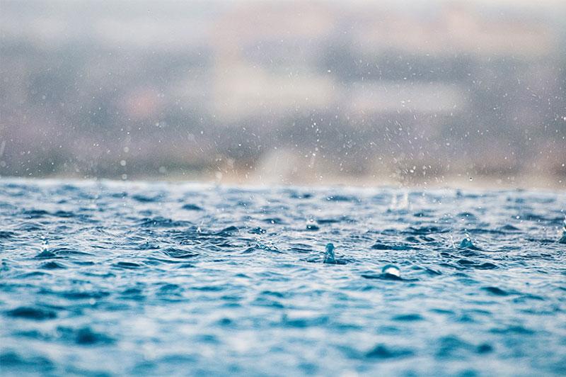 【6月】梅雨の時期に金運を上げる秘訣